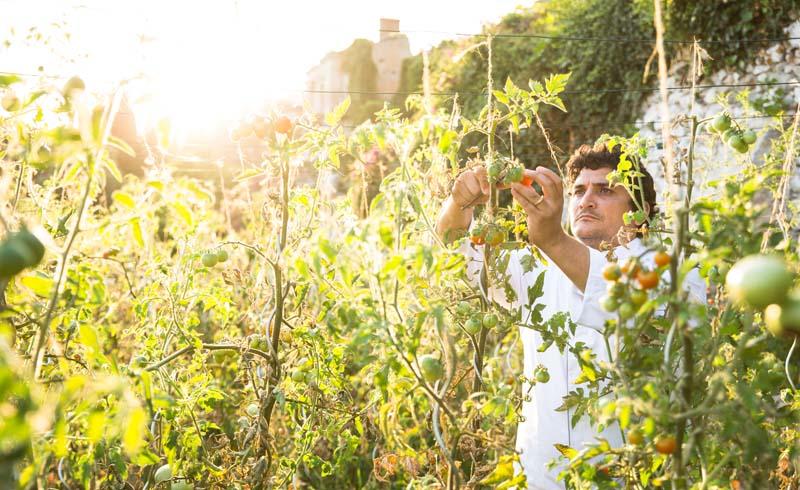 Mauro Colagreco sammelt Zutaten für sein Mondmenü im Garten des Mirazur