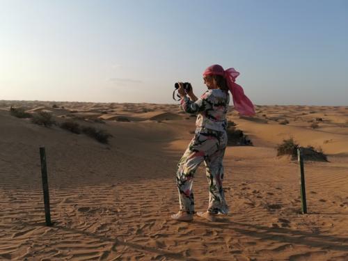 Wüsten Safari